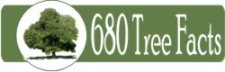 680 Tree Facts website Opens in new window