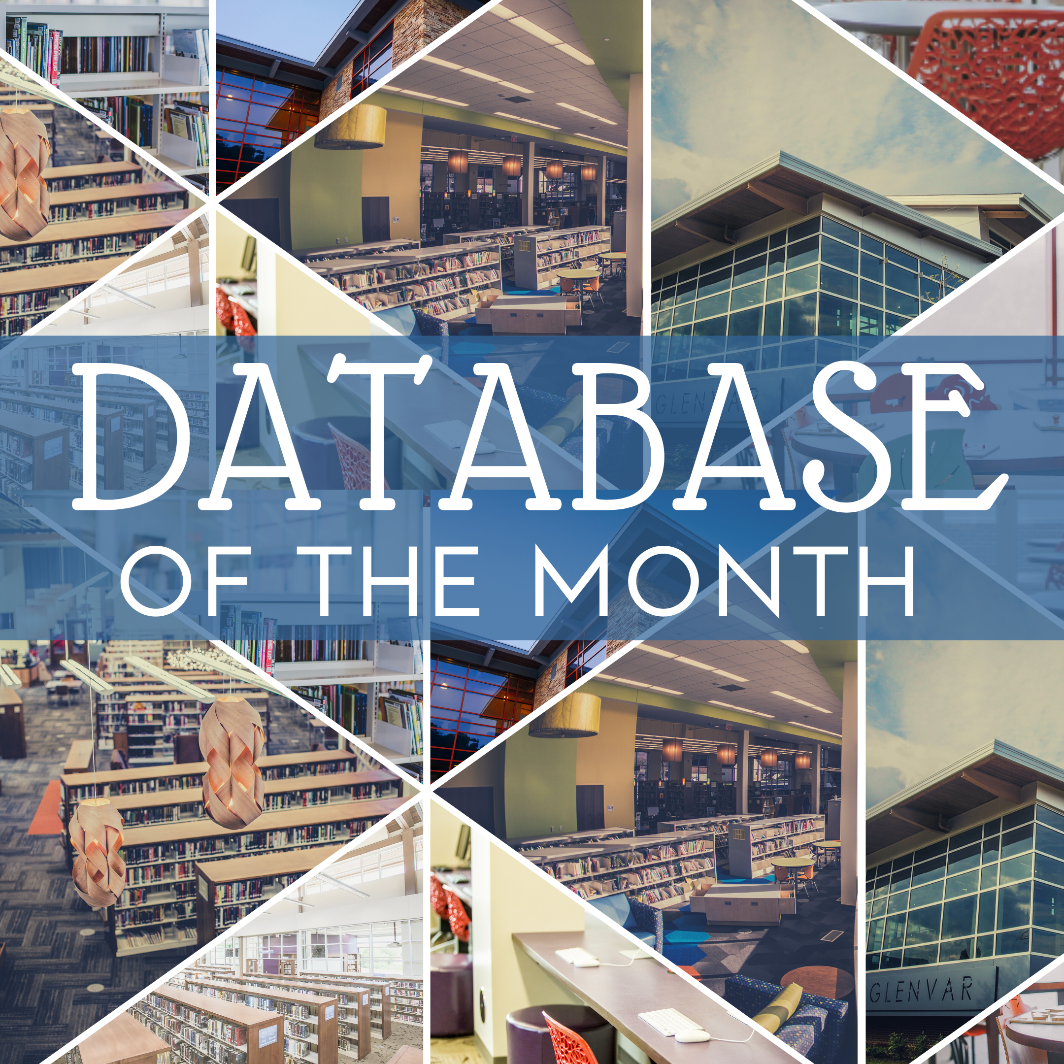 Database of the Month
