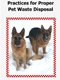 Pet Waste Brochure
