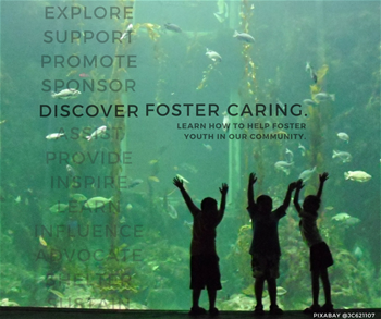 Discover Foster Caring