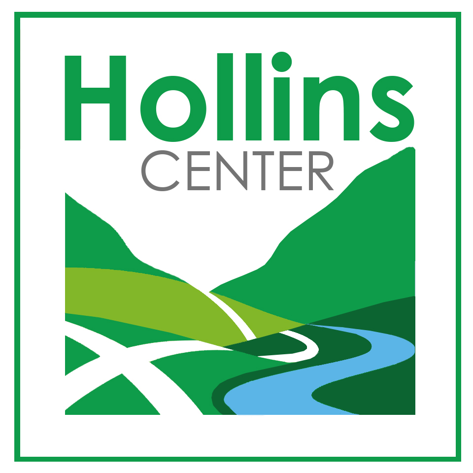Hollins Center Plan
